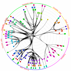 Core subnetwork (PNAS)