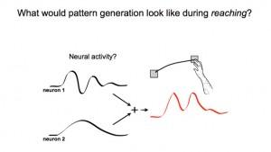 Joseph Fourier, matemático del siglo XIX, demostró que dos ritmos podrían sumarse y producir un tercer ritmo. Investigadores de Stanford han demostrado que tal base teórica opera en la actividad cerebral y produce el movimiento de brazos. (Crédito: Stanford University)