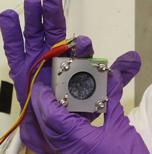 Cela microbiana de combustible mejorada  (crédito: Oregon State University)