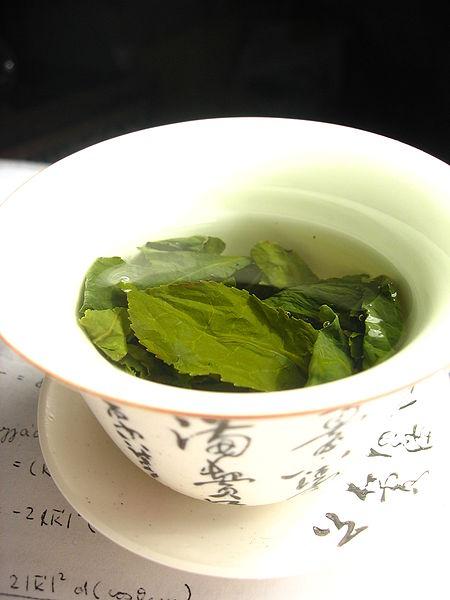Hojas de té verde (crédito: Wikimol/Wikimedia Commons)