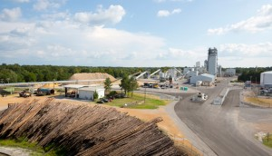 Pinos siendo preparados para convertirlos en gasolina celulósica y diesel en KiOR, Columbus, Misisipi. (Crédito: Ken Childress for KiOR)