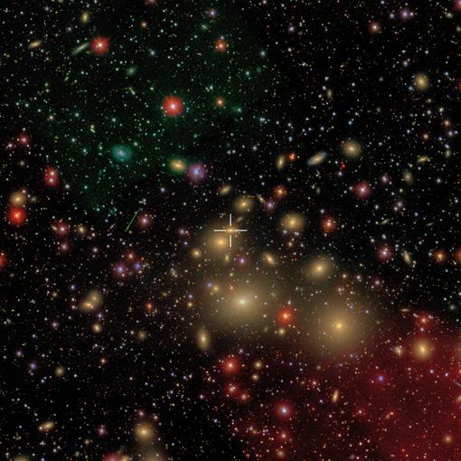 La galaxia NGC 1277 se encuentra cerca del grupo de galaxias Perseo, a una distancia de 250 millones de años luz de la Tierra. Todas las galaxias elípticas y redondas (amarillo) son galaxias ubicadas en el grupo. Comparadas con las galaxias alrededor, la NGC 1277 es relativamente compacta. (Crédito: David W. Hogg, Michael Blanton, and the SDSS Collaboration)