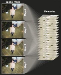La ubicación espacial está estrechamente conectada a la formación de nuevas memorias. Hasta ahora, se consideraba que la red celular era parte de un sistema único de mapeo unificado. Los nuevos descubrimientos demuestran que el sistema de red celular está en realidad compuesta de redes independientes, cada una con sus propiedades únicas. Cada mapa contiene propiedades únicas. Crédito: Tor Stensola, CBM/Kavli Institute for Systems Neuroscience)