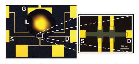 Imagen óptica de un nuevo dispositivo que muestra un droplet de líquido iónico. S es fuente y D, contacto; G, puerta de electrodo. (Crédito: Jaewoo Jeong et al./Science)