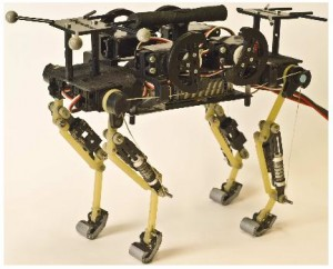 Cachorro de chita (crédito: A. Sproewitz et al./International Journal of Robotics Research)