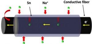 Ruta doble para el transporte de iones de sodio (Na+) a través de paredes de células de fibra y su difusión en la capa de estaño (Sn) de la superficie. (crédito: University of Maryland)
