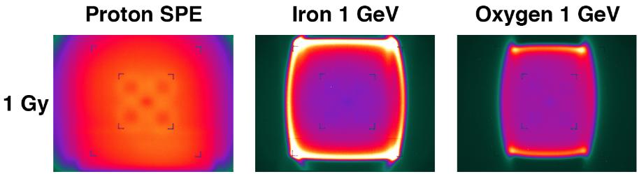 Exposición del chip a tres tipos de radiación de alta intensidad. (Crédito: Christopher E. Carr at al./Astrobiology)