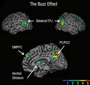 """Un grupo de sicólogos reporta por vez primera que la unión temporoparietal (TPJ) y la corteza prefrontal dorsomedia (DMPFC) son regiones asociadas con la propagación exitosa de ideas, a menudo llamado """"buzz"""". (Crédito: UCLA)"""