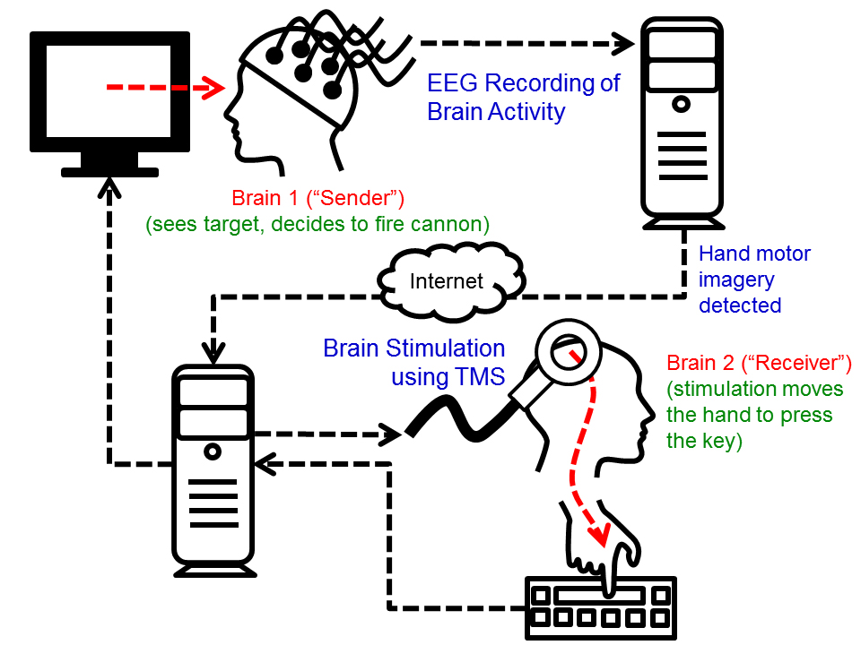 """Ciclo del experimento. Se graban las señales cerebrales del """"Emisor"""". Cuando la computadora detecta los movimientos imaginados de la mano, un comando de """"disparo"""" se transmite sobre la internet hacia una máquina TMS, que ocasiona un movimiento en la mano derecha del """"Receptor"""", por lo general presionando la tecla que fue disparada mentalmente. (Crédito: University of Washington)"""