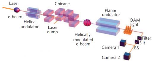 """Ilustración del experimento (no a escala). El rayo no modulado de electrones interactúa con un láser polarizado lineal en un ondulador helicoidal, que les da a los electrones un golpe de energía que depende de su posición en el rayo láser concentrado. El haz luego viaja longitudinalmente a través de un """"chicane"""" (una especie de dinamizador) que hace a los electrones con más energía alcanzar a los de menor energía (momento de compactación). El resultado es un haz de luz """"microagrupado helicoidalmente"""" que irradia luz con OAM en la frecuencia fundamental dentro del ondulador planar. (Crédito: Erik Hemsing et al./Nature Physics)"""