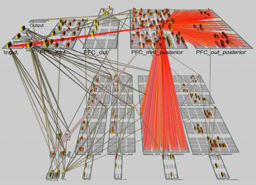 """Simulación de """"red de indirección"""" en una red neural captando un episodio de aprendizaje, donde al cerebro simulado se le presentan nuevas palabras que forman oraciones. (crédito: Randall O'Reilly/University of Colorado Boulder)"""