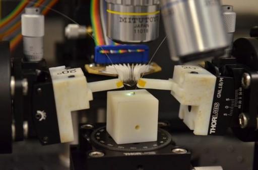 Un microchip que contiene tanto fotónica como electrónica es sometido a pruebas en el laboratorio de Milos Popovic, en la Universidad de Colorado. (Crédito: Casey Cass/CU-Boulder)