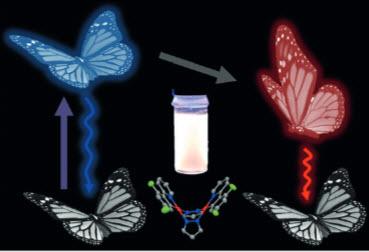 """Una """"mariposa"""" fosforescente molecular que genera emisión dual (blanca) a partir de fotoexcitación. (crédito: M. Han et al./Angewandte Chemie)"""