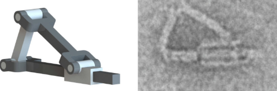 Nanoscale-hinges-and-piston
