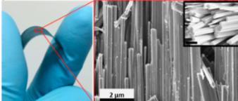 Imagen óptica del núcleo y recubrimiento de nanocables en una hoja de tugsteno bajo doblado mecánico (azul). La correspondiente imagen SEM (derecha) muestra nanocables de alta densidad bien alineados con su correspondiente recubrimiento en la superficie (recurado). (crédito: Nitin Choudhary et al./ACS Nano)