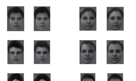 Descifran la manera en que los rostros están codificados en el cerebro