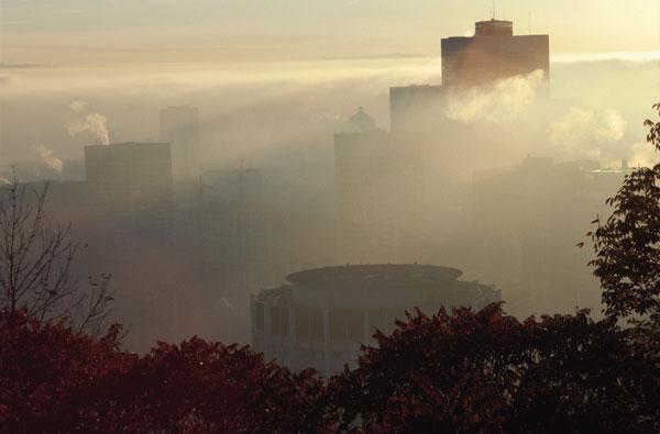 Los efectos de la contaminación ambiental sobre nuestra salud